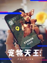 《宠物天王》(校对版全本)作者:皆破
